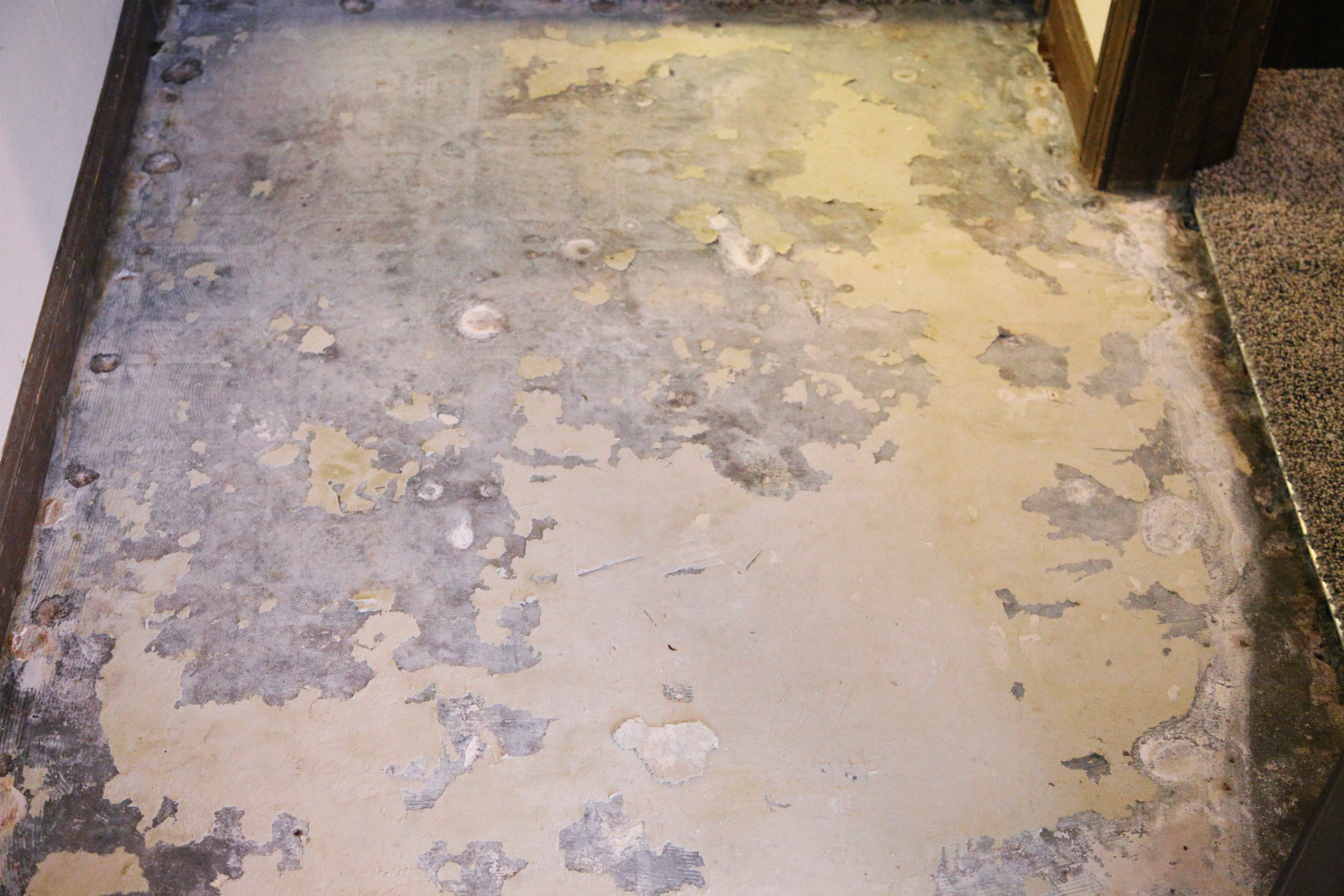 Removing vinyl laminate flooring from a concrete subfloor with water and a 5 in 1 tool