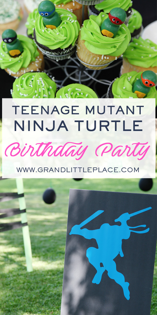 TMNT Boys Birthday Party