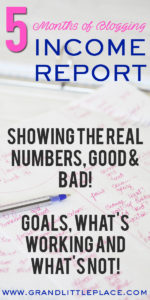 New Blog Real Income Report Profit Loss Total Investment And Income 5 Months Of Blogging Progress Report Grand Little Place