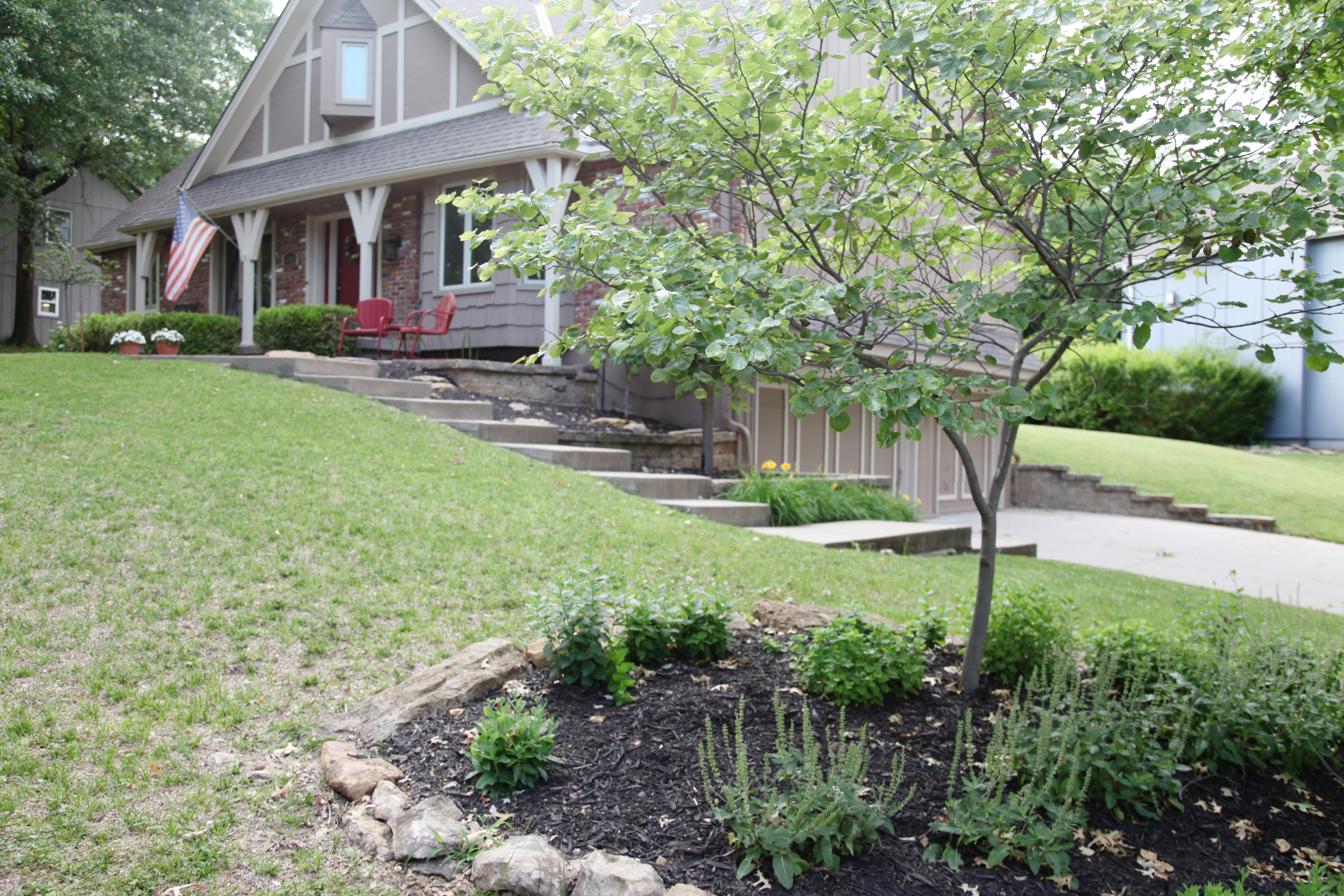 How To Spruce Up Your Landscaping On A Budget With